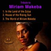 Tribute to Miriam Makeba (63 Success) de Miriam Makeba