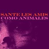 Como Animales de Sante Les Amis