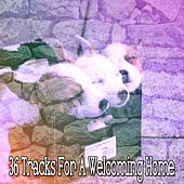 36 Tracks For A Welcoming Home by Ocean Sounds Collection (1)