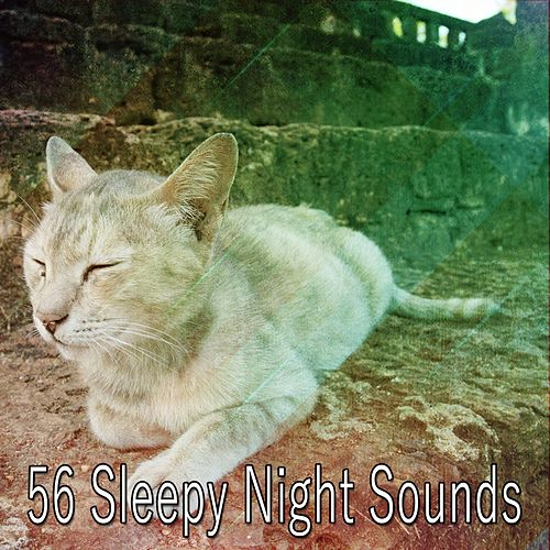 56 Sleepy Night Sounds by Ocean Waves For Sleep (1)