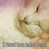 53 Natural House Ambient Sounds by Ocean Sounds Collection (1)