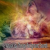 45 Natural Spa Therapy Background Sounds by S.P.A