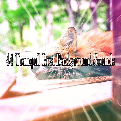 44 Tranquil Rest Background Sounds de Baby Sleep Sleep