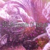 51 Life Sounds Of Nature de Sounds Of Nature