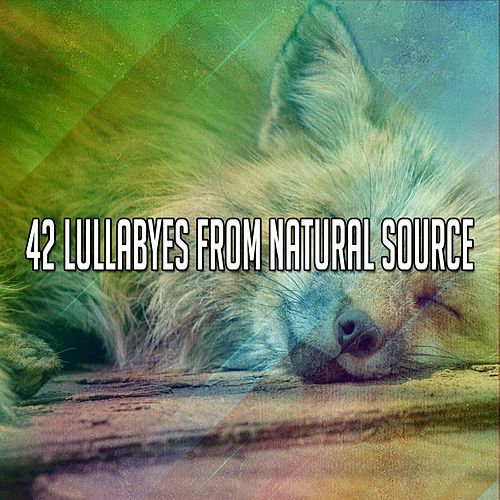 42 Lullabyes From Natural Source by Smart Baby Lullaby