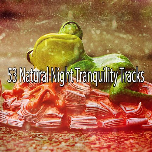 53 Natural Night Tranquility Tracks by White Noise For Baby Sleep