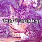 40 Sounds Of Tranquility For Spa by S.P.A