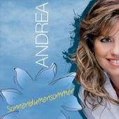Sonnenblumensommer by Andrea