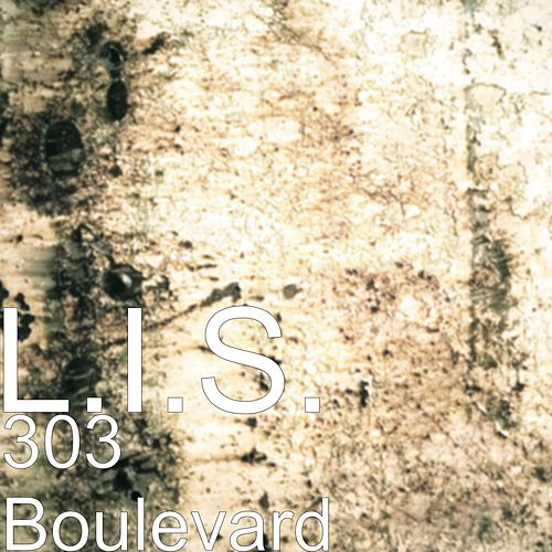303 Boulevard by L.I.S.