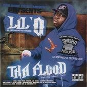 [Screwed] Tha Flood - Swishahouse Mix by Lil' O