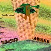 Thunder$troke by Beaten Awake