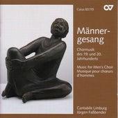 Choral Music (19th and 20th Centuries) - ROSSINI, G. / RHEINBERGER, J.G. / GUSTAFSSON, K.-E. / MILHAUD, D. / BRITTEN, B. (Cantabile Limburg) by Jurgen Fassbender