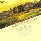 PISENDEL, J.G.: Orchestral Music (Dresden Concertos) (Mullejans) by Various Artists
