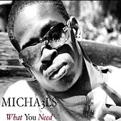 What You Need by Michael S.