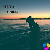 $Ombre by Dlna