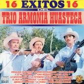 16 Exitos by Trio Armonia Huasteca