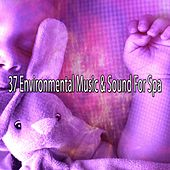 37 Environmental Music & Sound For Spa by S.P.A