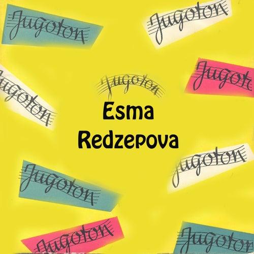 Esma Redzepova by Esma Redzepova