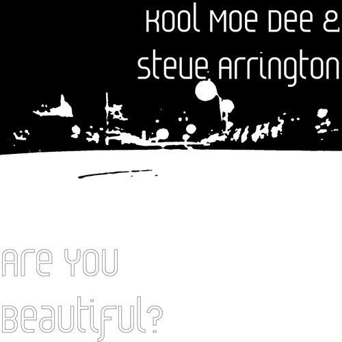 Are You Beautiful? by Kool Moe Dee