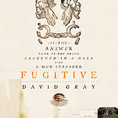 Fugitive by David Gray