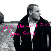 You're the World to Me by David Gray