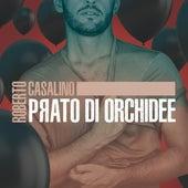 Prato di orchidee di Roberto Casalino