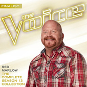 The Complete Season 13 Collection (The Voice Performance) by Various Artists
