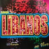Sanfoneiro Luzardo (Ao Vivo) de Banda Libanos