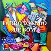 Forró Danado de Bom by Donizete Marcio