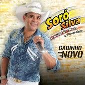 Gadinho Novo von Soró Silva