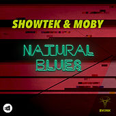 Natural Blues by Moby