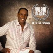 A-T-Ti-Tude by Wilson Meadows