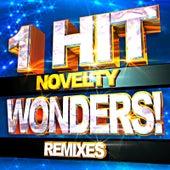 Novelty 1 Hit Wonders! Remixes de ReMix Kings