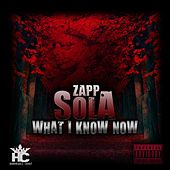 What I Know Now by Zapp Sola