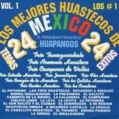 Los Mejores Huastecos De Mexico, Vol. 1 by Various Artists