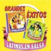 Grandes Éxitos Latinos en Salsa de Various Artists