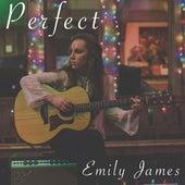 Perfect (Acoustic) de Emily James