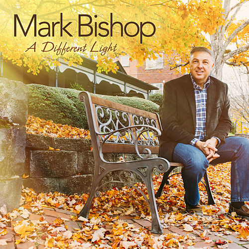 A Different Light by Mark Bishop