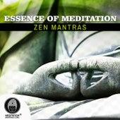 Essence of Meditation (Zen Mantras, Highest Attention, Leave Consciousness Away for Deep Well Being) de Meditation Mantras Guru