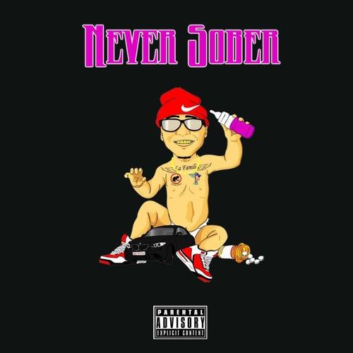 Never Sober by DJ Payback Garcia