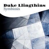 Symbiosis de Duke Llingthins