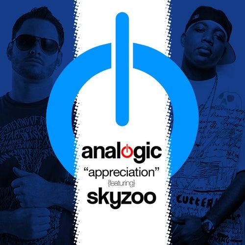 Appreciation Digi-12' by Analogic