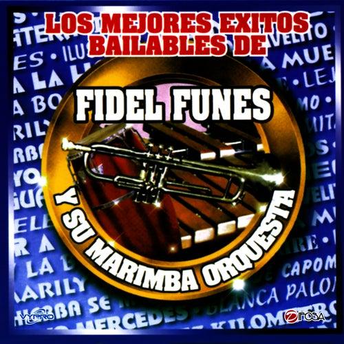 Los Mejores Exitos Bailables, Guatemala by Fidel Funes