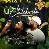 La Culebrita (feat. Lirico En La Casa) by Don Miguelo