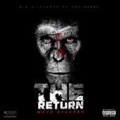 The Return by Mack Biggers