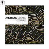 Ambitious Sounds, Vol. 3 - The Deep Side of Tech-House von Various Artists
