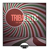 Tribalistic, Vol. 2 (The Sound of the Drums) by Various Artists