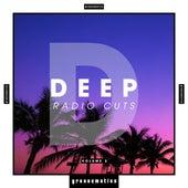 Deep Radio Cuts, Vol. 2 de Various Artists