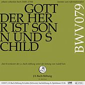 Bach: Cantatas, Vol. 21 von Various Artists