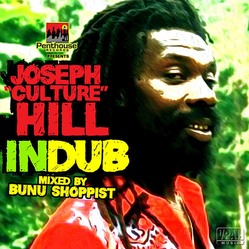 "Joseph ""Culture' Hill in Dub by Various Artists"